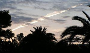 Ute-Mallorca---019.jpg